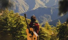6 Awesome facts about Travel Guitar