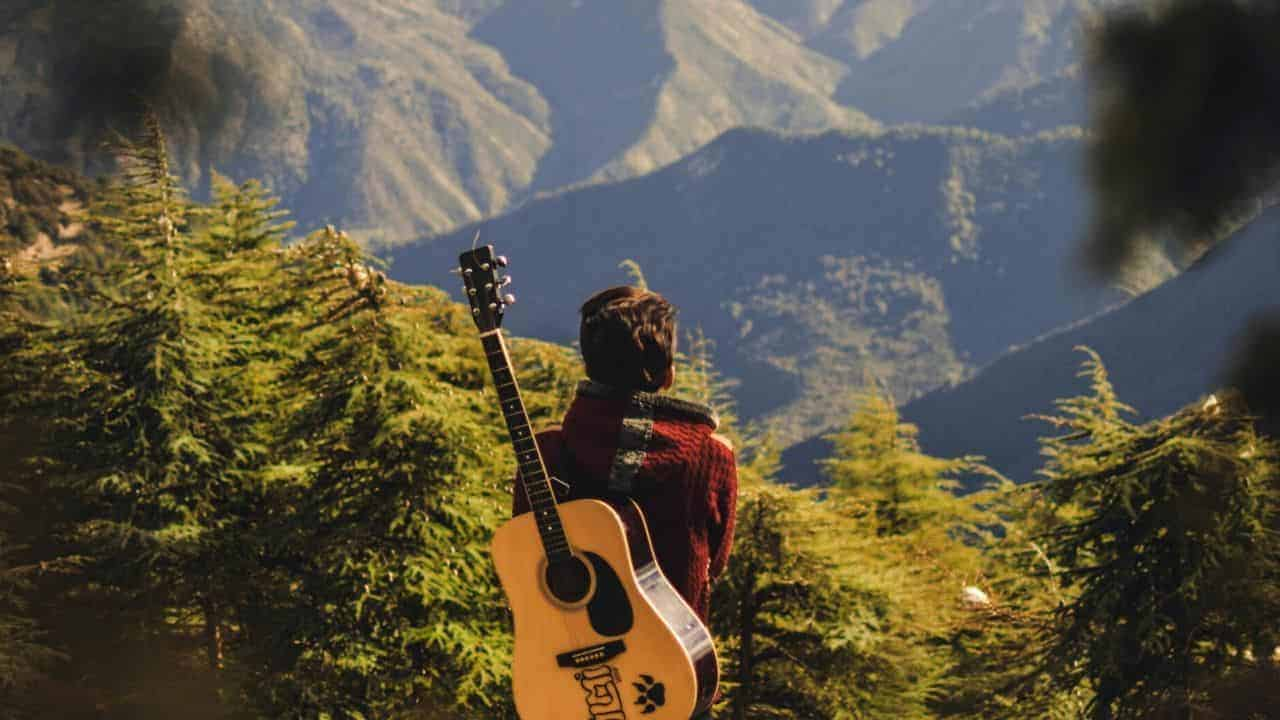 Awesome facts about Travel Guitar